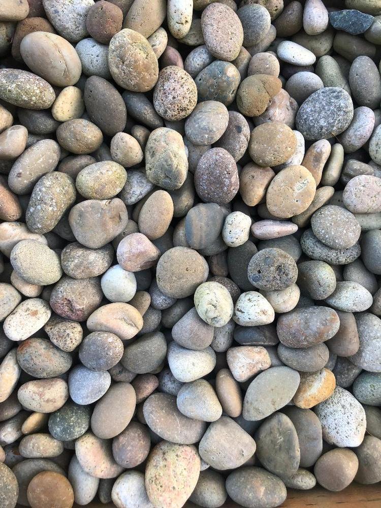 Mexican Pebbles - Tan (75 lb. bags)